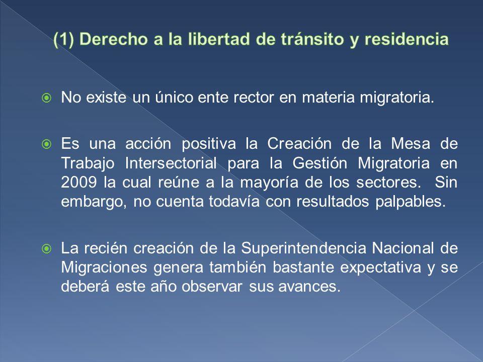 No existe un único ente rector en materia migratoria.