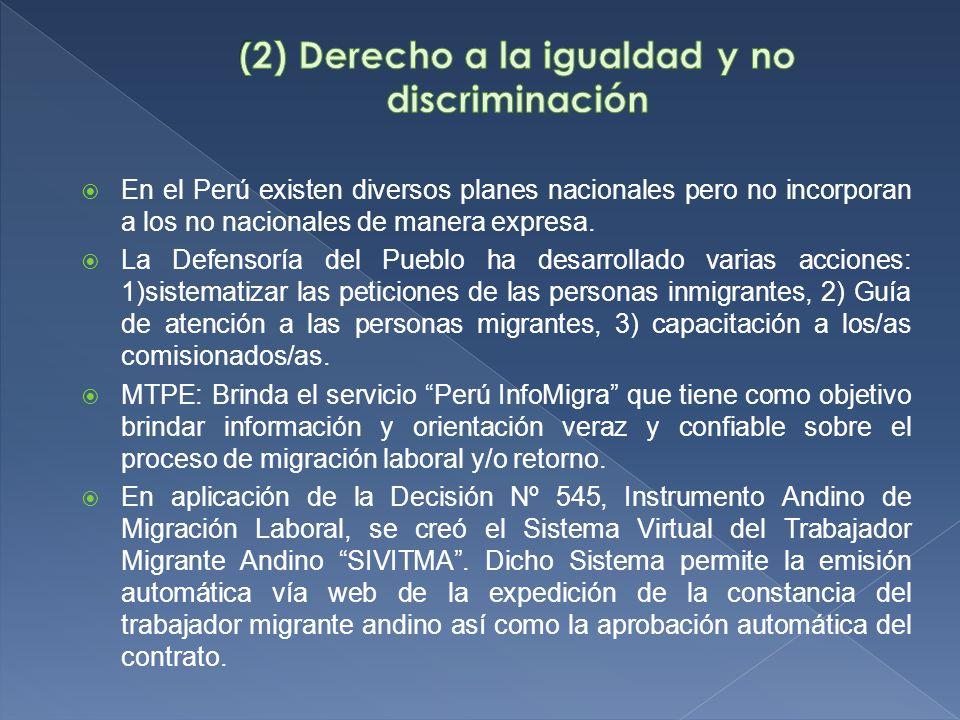 En el Perú existen diversos planes nacionales pero no incorporan a los no nacionales de manera expresa.