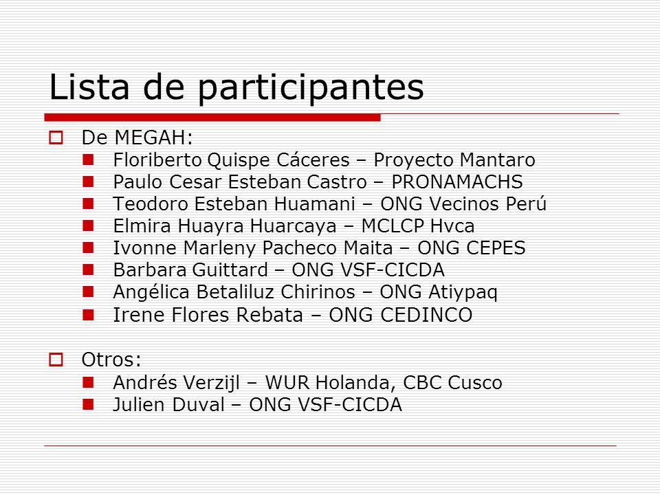 Lista de participantes De MEGAH: Floriberto Quispe Cáceres – Proyecto Mantaro Paulo Cesar Esteban Castro – PRONAMACHS Teodoro Esteban Huamani – ONG Ve