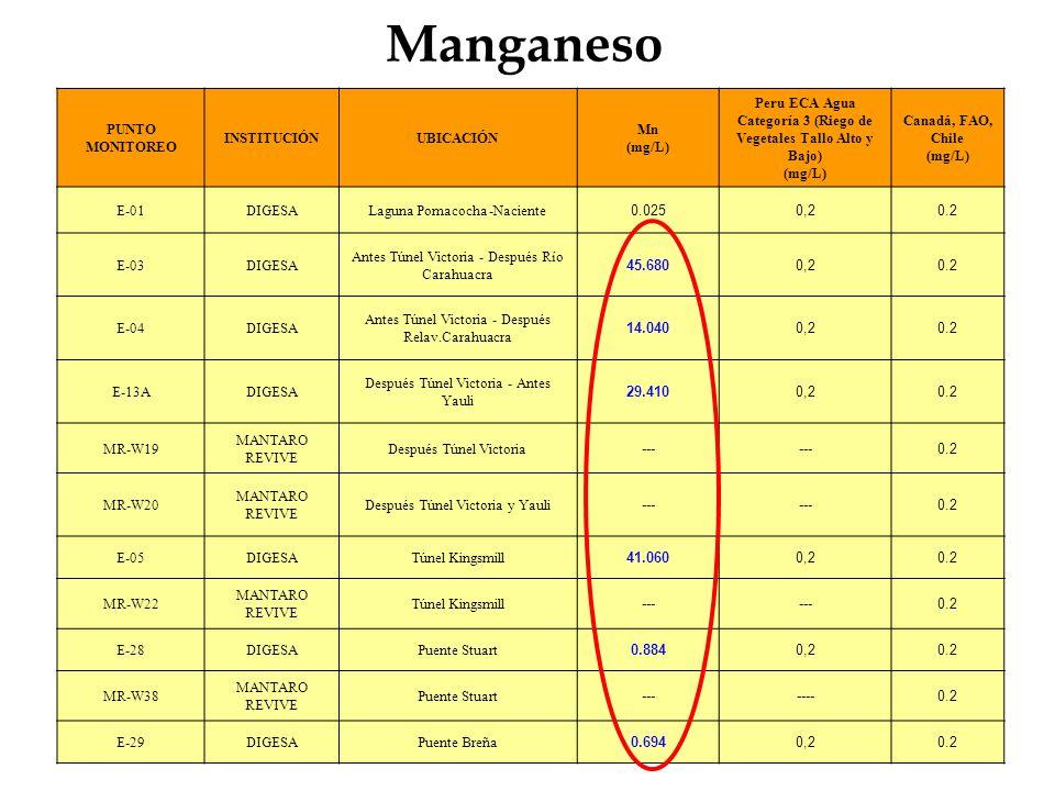 Manganeso PUNTO MONITOREO INSTITUCIÓNUBICACIÓN Mn (mg/L) Peru ECA Agua Categoría 3 (Riego de Vegetales Tallo Alto y Bajo) (mg/L) Canadá, FAO, Chile (m