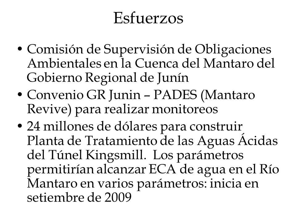 Esfuerzos Comisión de Supervisión de Obligaciones Ambientales en la Cuenca del Mantaro del Gobierno Regional de Junín Convenio GR Junin – PADES (Manta