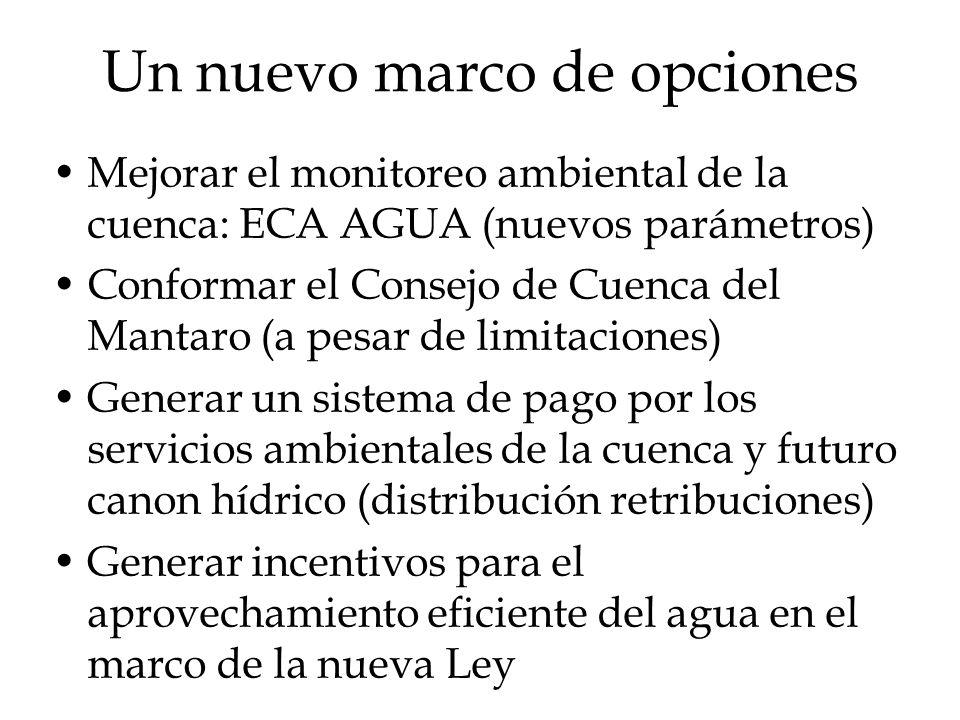 Un nuevo marco de opciones Mejorar el monitoreo ambiental de la cuenca: ECA AGUA (nuevos parámetros) Conformar el Consejo de Cuenca del Mantaro (a pes