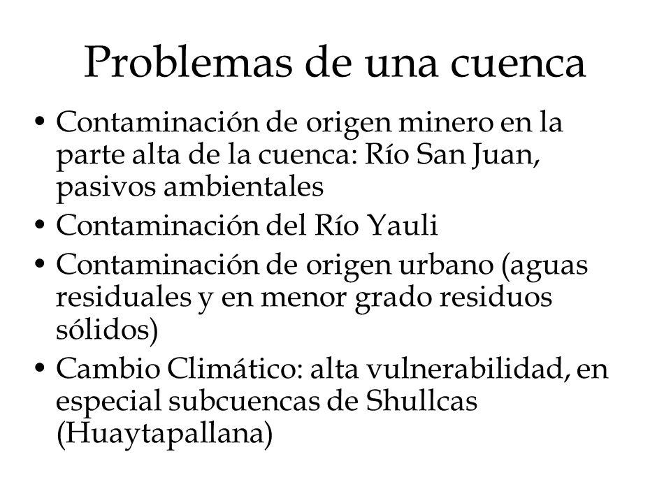 Problemas de una cuenca Contaminación de origen minero en la parte alta de la cuenca: Río San Juan, pasivos ambientales Contaminación del Río Yauli Co
