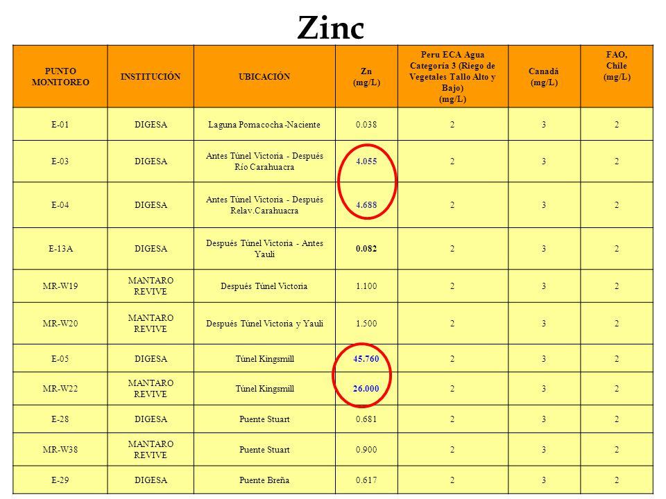 Zinc PUNTO MONITOREO INSTITUCIÓNUBICACIÓN Zn (mg/L) Peru ECA Agua Categoría 3 (Riego de Vegetales Tallo Alto y Bajo) (mg/L) Canadá (mg/L) FAO, Chile (