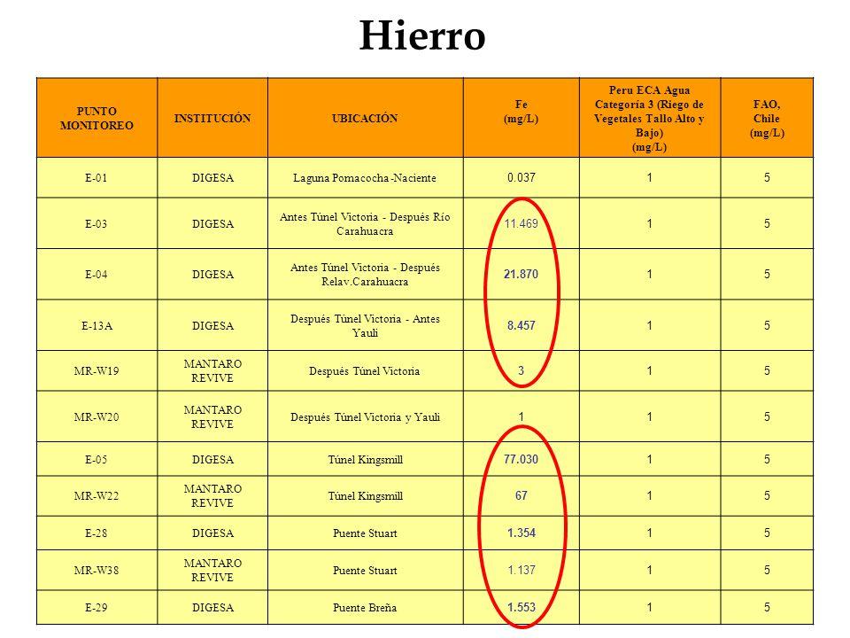 Hierro PUNTO MONITOREO INSTITUCIÓNUBICACIÓN Fe (mg/L) Peru ECA Agua Categoría 3 (Riego de Vegetales Tallo Alto y Bajo) (mg/L) FAO, Chile (mg/L) E-01DI