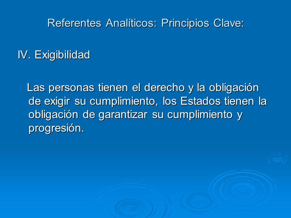 Referentes Analíticos: Principios Clave: IV.