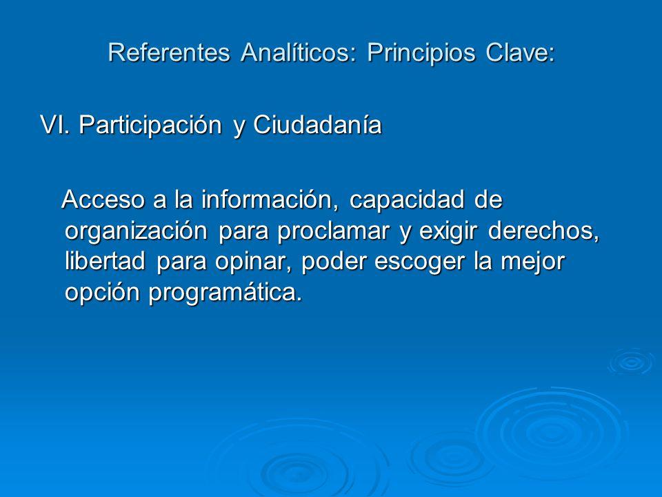 Referentes Analíticos: Principios Clave: VI.