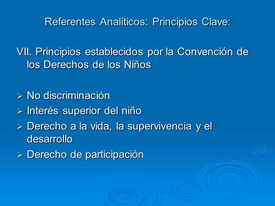 Referentes Analíticos: Principios Clave: VII.