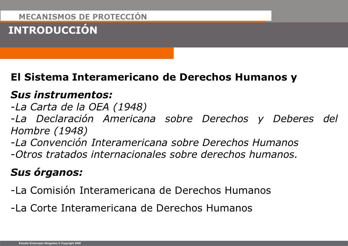 MECANISMOS DE PROTECCIÓN INTRODUCCIÓN El Sistema Interamericano de Derechos Humanos y Sus instrumentos: -La Carta de la OEA (1948) -La Declaración Ame
