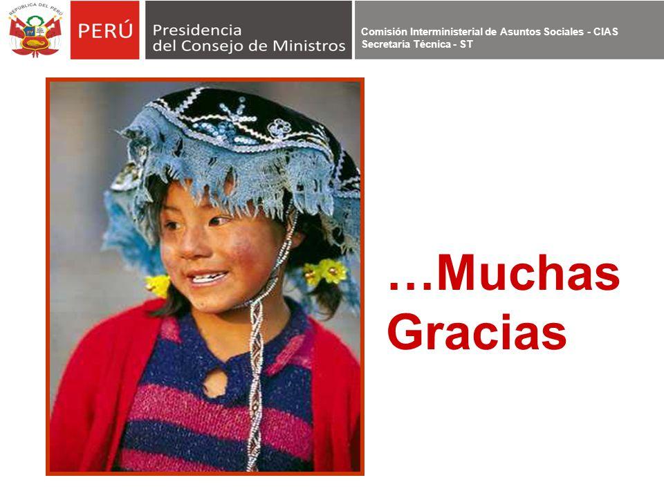 Comisión Interministerial de Asuntos Sociales - CIAS Secretaría Técnica - ST …Muchas Gracias