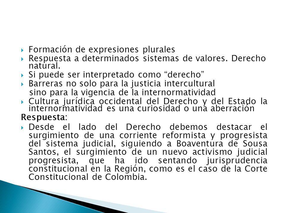 Formación de expresiones plurales Respuesta a determinados sistemas de valores. Derecho natural. Si puede ser interpretado como derecho Barreras no so