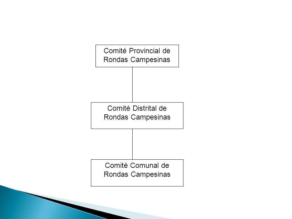 Comité Provincial de Rondas Campesinas Comité Distrital de Rondas Campesinas Comité Comunal de Rondas Campesinas