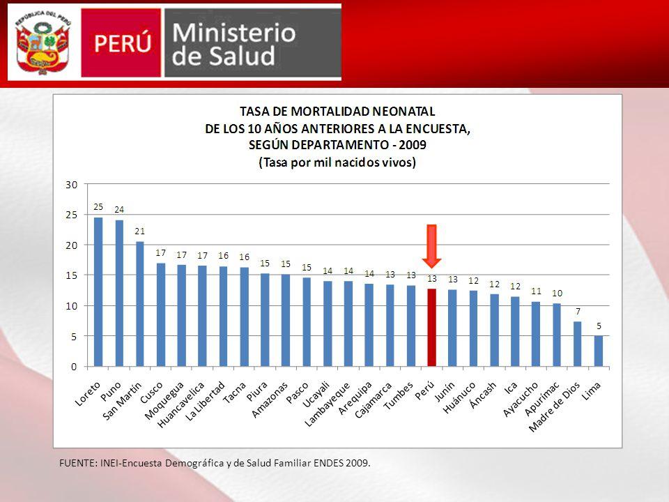 FUENTE: INEI-Encuesta Demográfica y de Salud Familiar ENDES 2009.