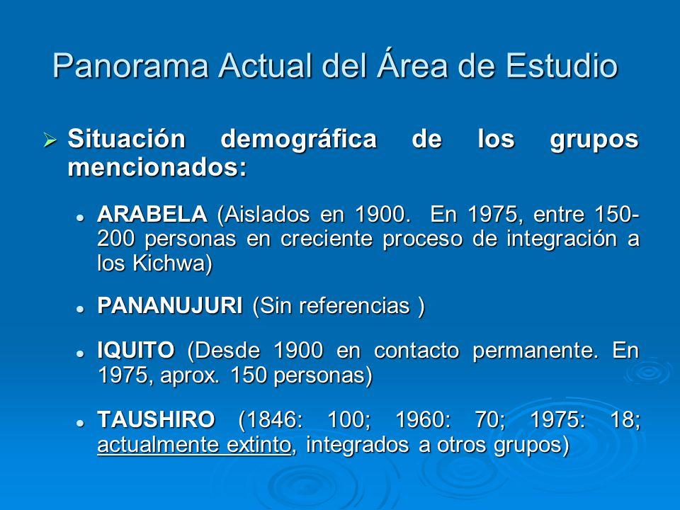 Panorama Actual del Área de Estudio Situación demográfica de los grupos mencionados: Situación demográfica de los grupos mencionados: ARABELA (Aislados en 1900.