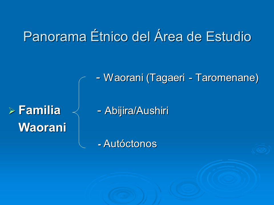 - Waorani (Tagaeri - Taromenane) - Waorani (Tagaeri - Taromenane) Familia - Abijira/Aushiri Familia - Abijira/AushiriWaorani - Autóctonos - Autóctonos