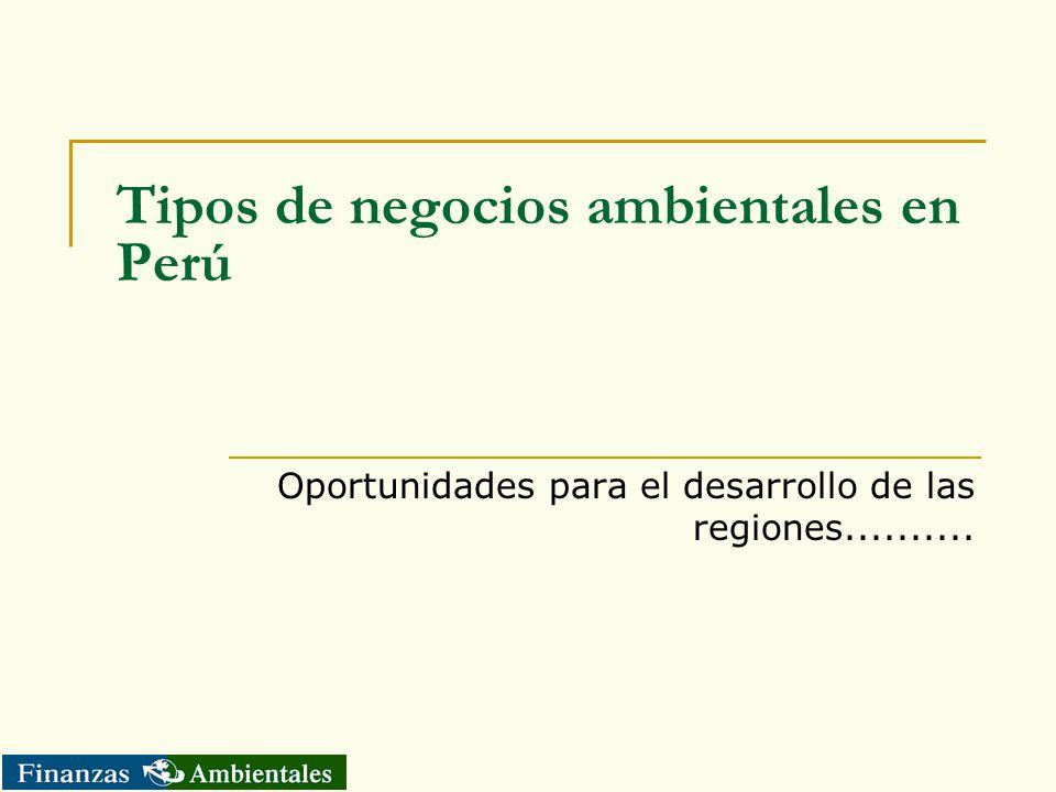 Tipos de negocios ambientales en Perú Oportunidades para el desarrollo de las regiones..........