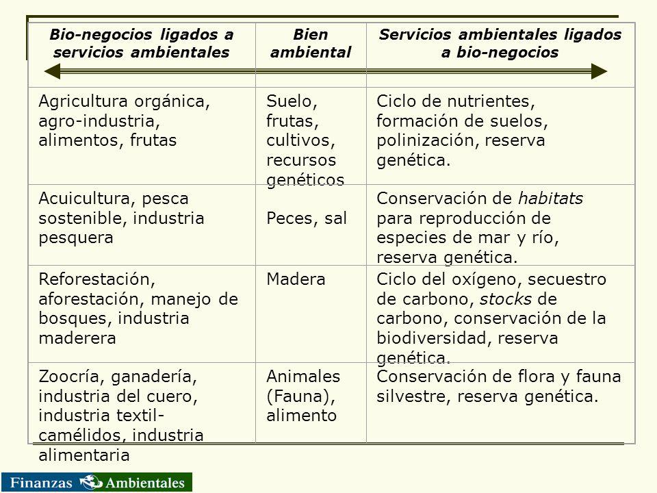 Bio-negocios ligados a servicios ambientales Bien ambiental Servicios ambientales ligados a bio-negocios Agricultura orgánica, agro-industria, aliment