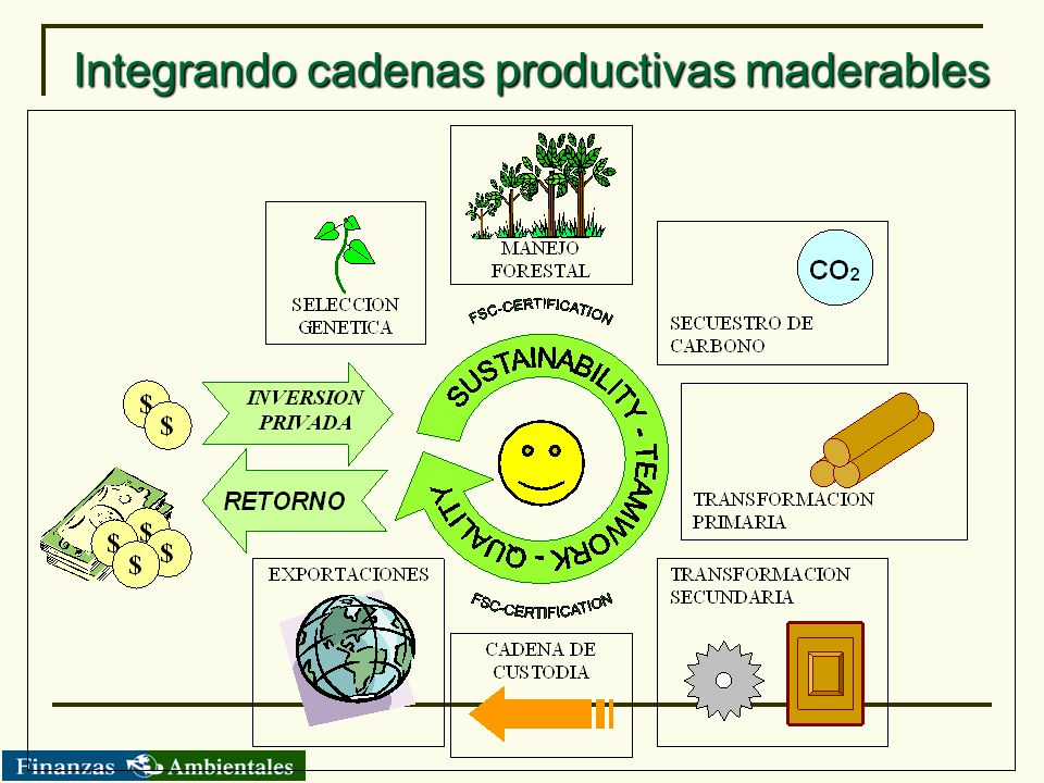 Integrando cadenas productivas maderables