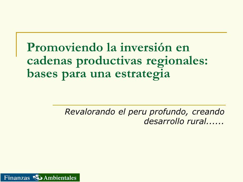 Promoviendo la inversión en cadenas productivas regionales: bases para una estrategia Revalorando el peru profundo, creando desarrollo rural......