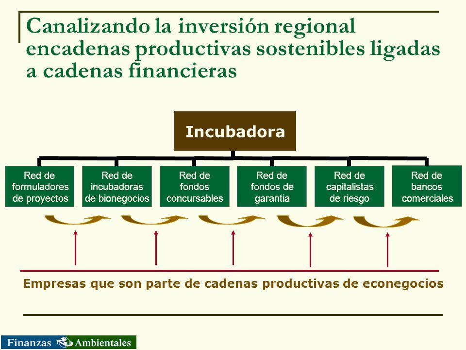 Canalizando la inversión regional encadenas productivas sostenibles ligadas a cadenas financieras Empresas que son parte de cadenas productivas de eco