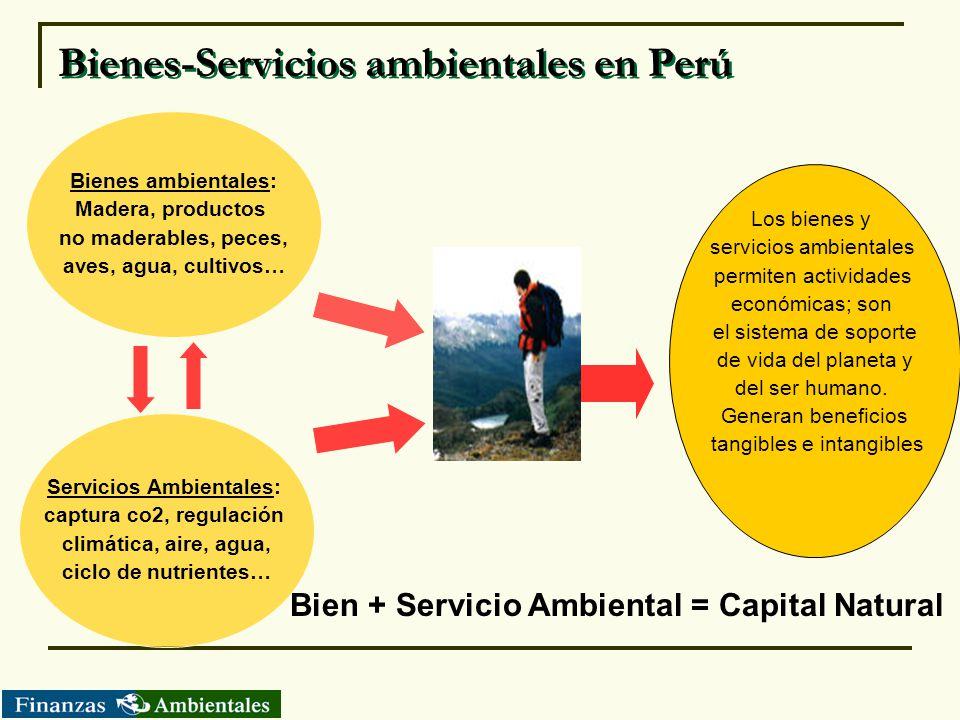 Bienes-Servicios ambientales en Perú Bienes ambientales: Madera, productos no maderables, peces, aves, agua, cultivos… Servicios Ambientales: captura