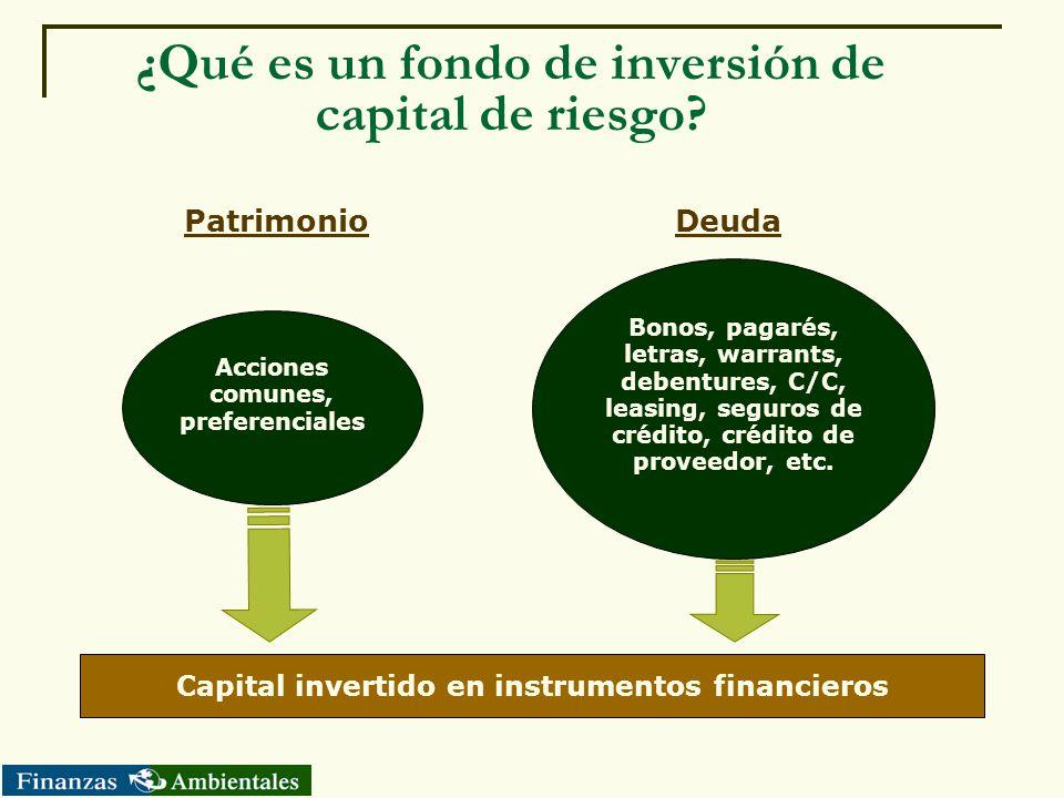 ¿Qué es un fondo de inversión de capital de riesgo? Acciones comunes, preferenciales Bonos, pagarés, letras, warrants, debentures, C/C, leasing, segur