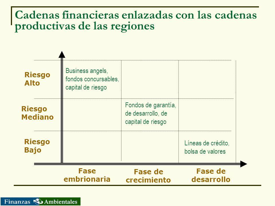 Cadenas financieras enlazadas con las cadenas productivas de las regiones Fase embrionaria Fase de crecimiento Fase de desarrollo Riesgo Alto Riesgo M