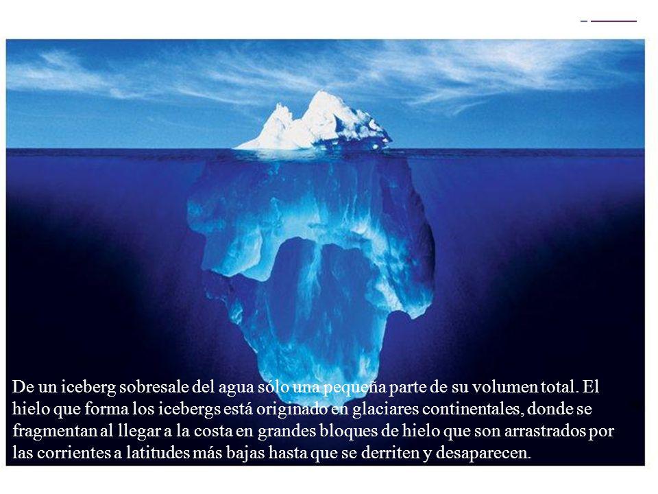 + De un iceberg sobresale del agua sólo una pequeña parte de su volumen total. El hielo que forma los icebergs está originado en glaciares continental