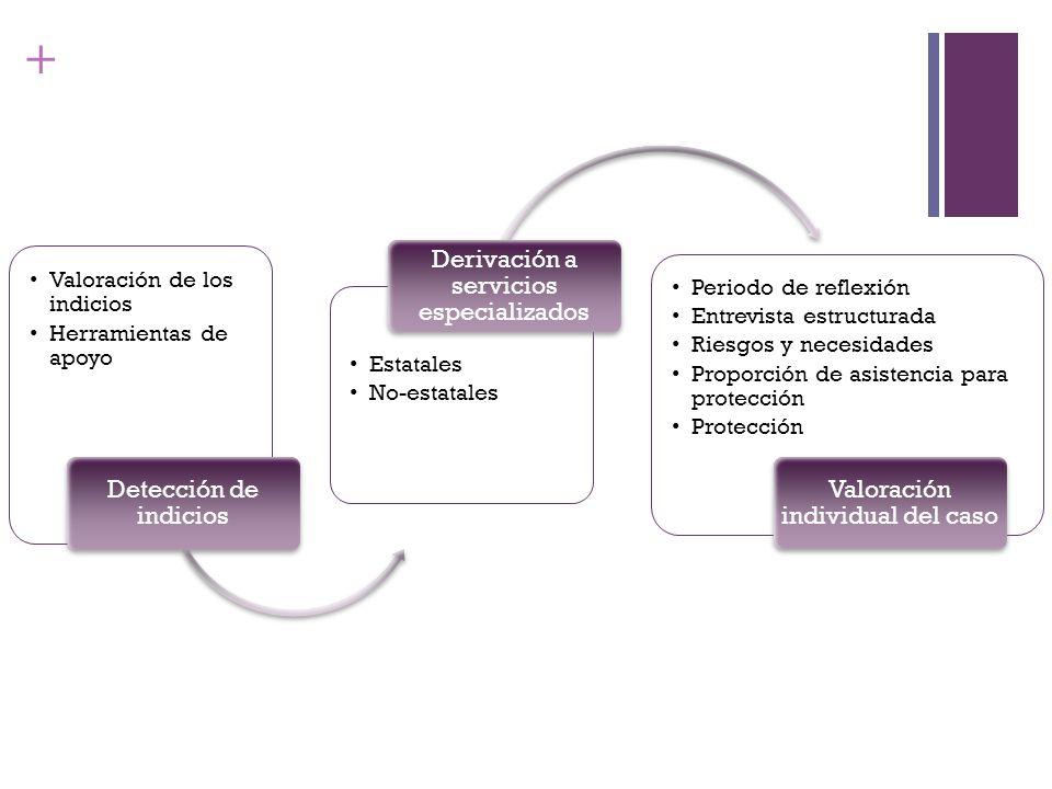 + Valoración de los indicios Herramientas de apoyo Detección de indicios Estatales No-estatales Derivación a servicios especializados Periodo de refle