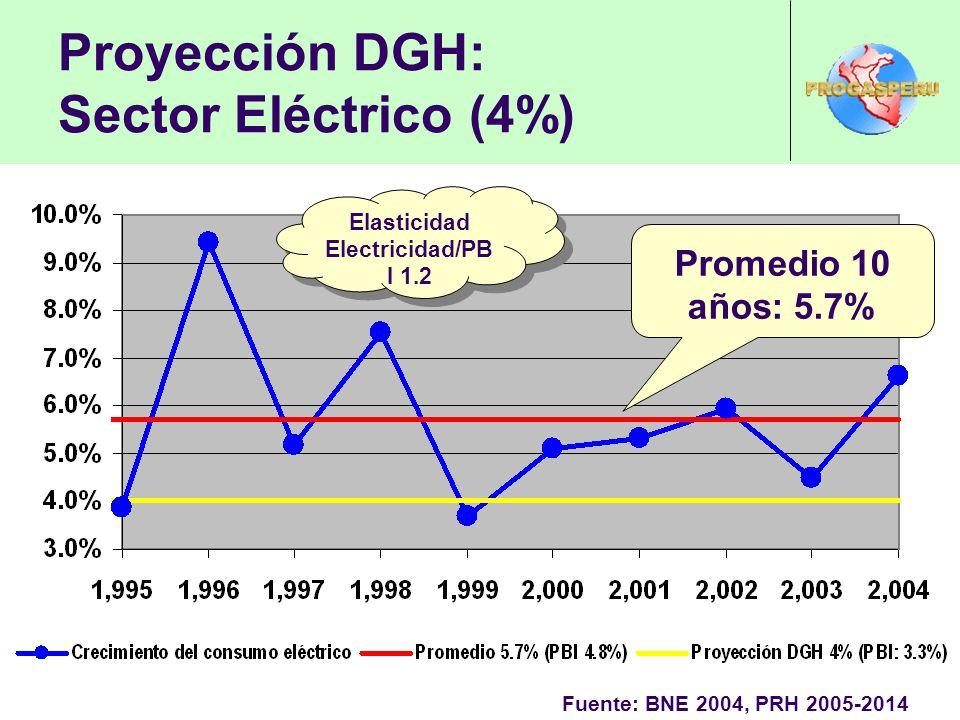 Proyección DGH: Sector Eléctrico (4%) Fuente: BNE 2004, PRH 2005-2014 Promedio 10 años: 5.7% Elasticidad Electricidad/PB I 1.2