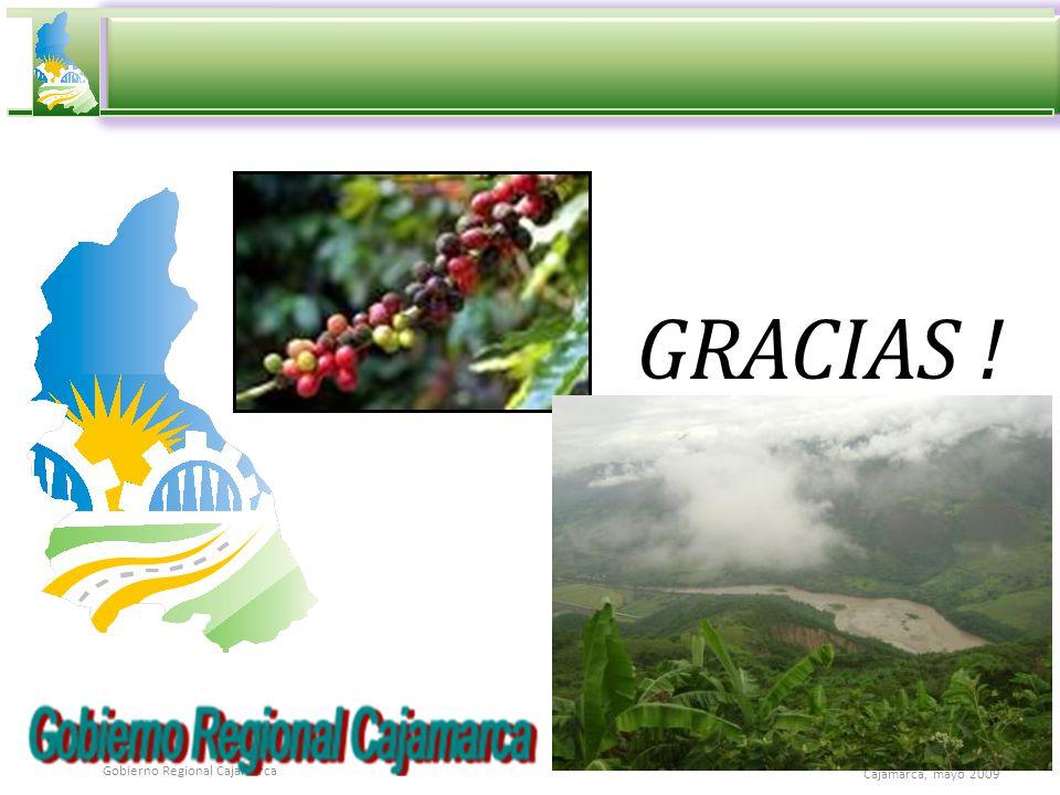 Cajamarca, mayo 2009 Gobierno Regional Cajamarca GRACIAS !