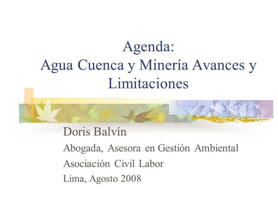 Agenda: Agua Cuenca y Minería Avances y Limitaciones Doris Balvín Abogada, Asesora en Gestión Ambiental Asociación Civil Labor Lima, Agosto 2008