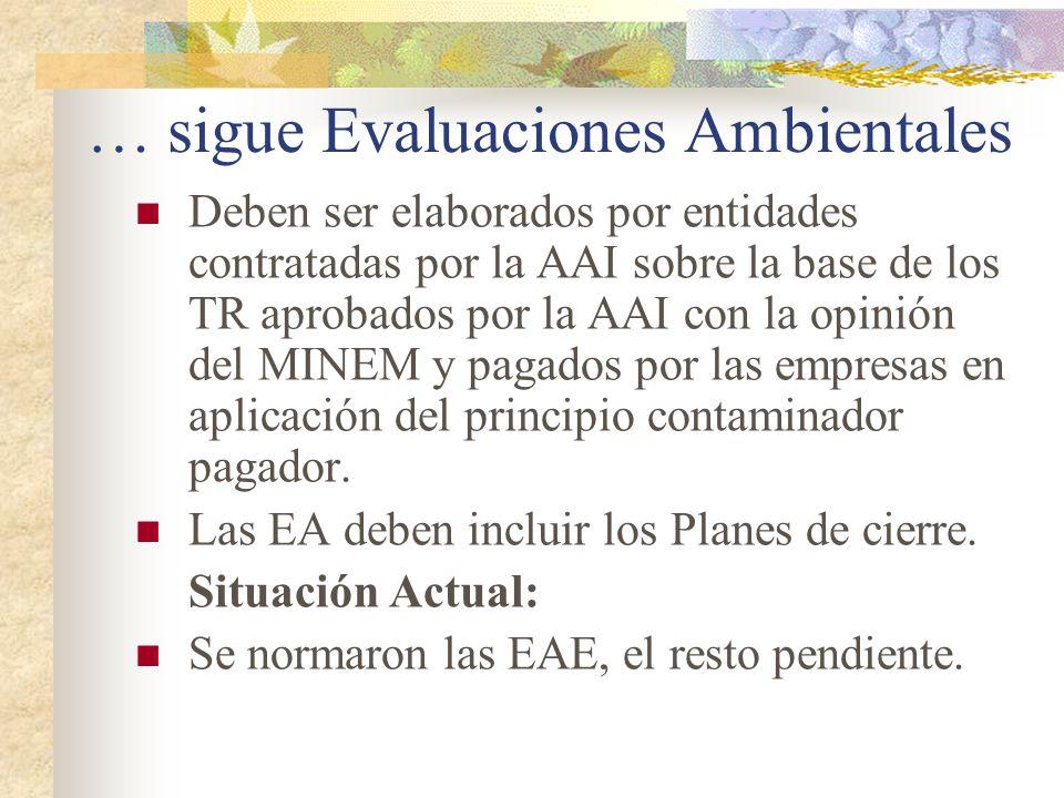 … sigue Evaluaciones Ambientales Deben ser elaborados por entidades contratadas por la AAI sobre la base de los TR aprobados por la AAI con la opinión