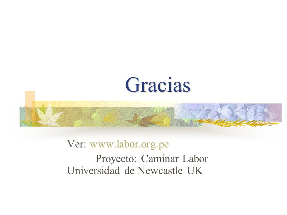 Gracias Ver: www.labor.org.pewww.labor.org.pe Proyecto: Caminar Labor Universidad de Newcastle UK