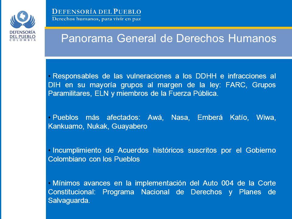 Panorama General de Derechos Humanos Responsables de las vulneraciones a los DDHH e infracciones al DIH en su mayoría grupos al margen de la ley: FARC