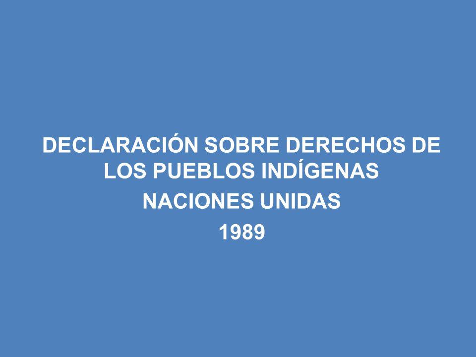 DECLARACIÓN SOBRE DERECHOS DE LOS PUEBLOS INDÍGENAS NACIONES UNIDAS 1989