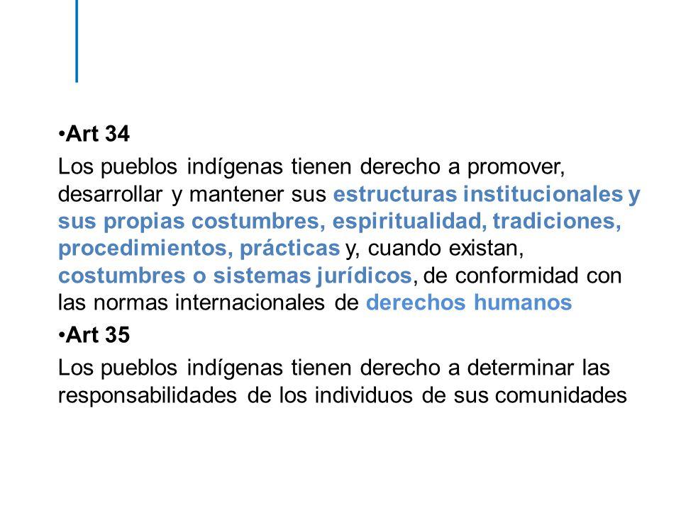 Art 34 Los pueblos indígenas tienen derecho a promover, desarrollar y mantener sus estructuras institucionales y sus propias costumbres, espiritualida