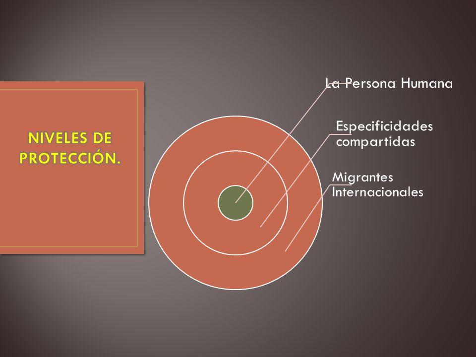 La Persona Humana Especificidades compartidas Migrantes Internacionales