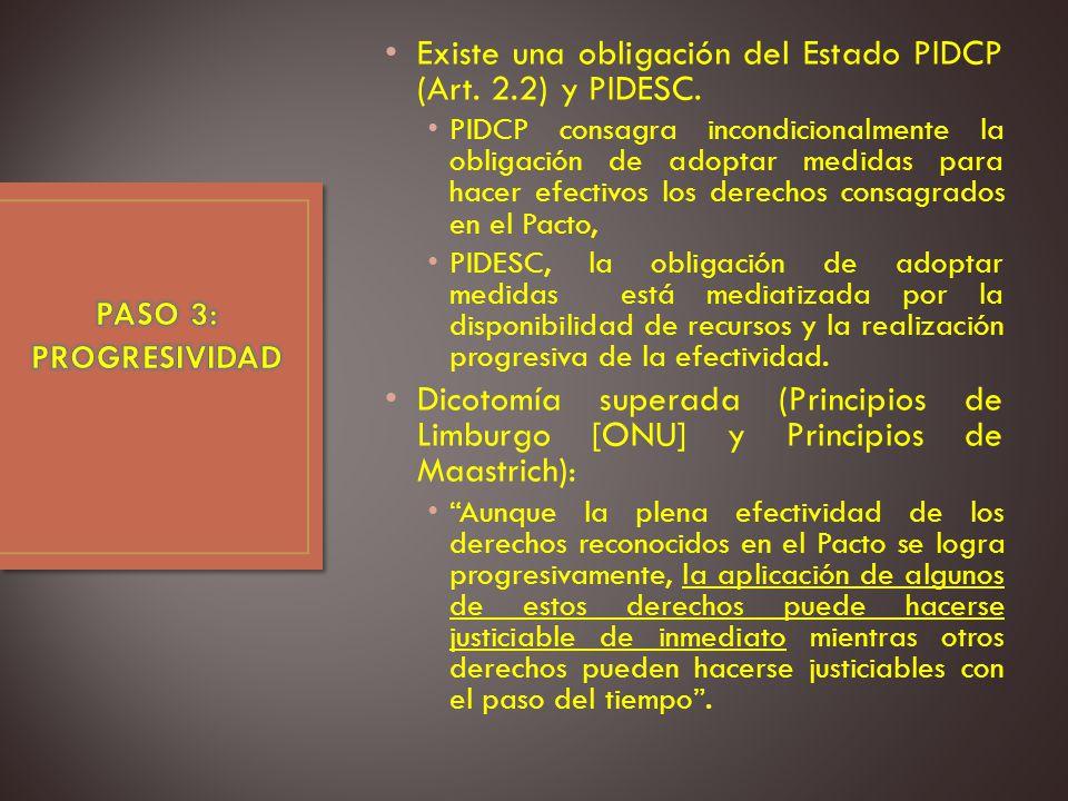 Existe una obligación del Estado PIDCP (Art.2.2) y PIDESC.