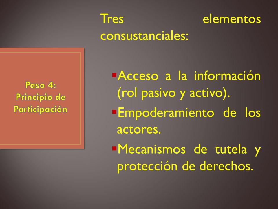 Tres elementos consustanciales: Acceso a la información (rol pasivo y activo).