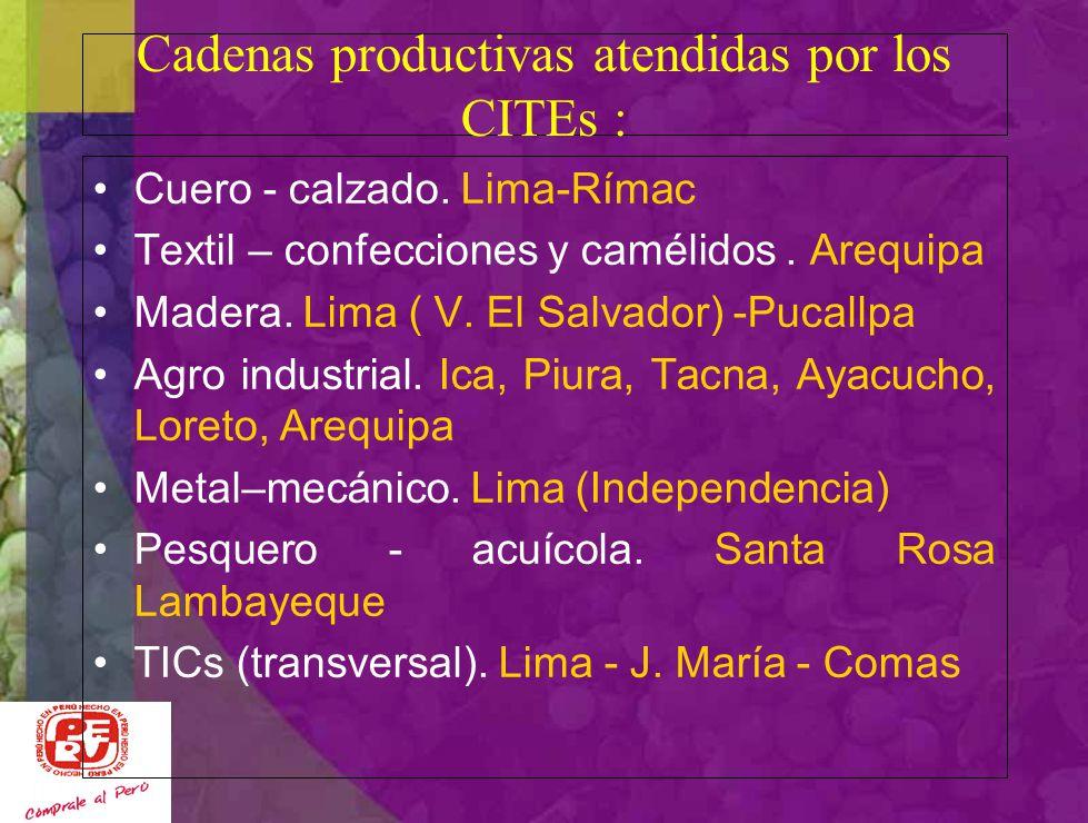 Agencia de Promoción de Inversiones CITEvid está encargado de la Secretaría Técnica Proyetos con Municipios de Pisco, Huacachina, los Aquijes y otros