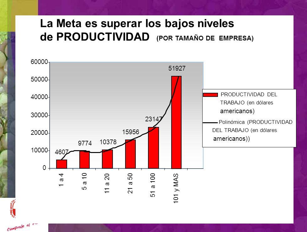 METAS MODELO EXPORTADOR INCLUYENTE SUPERAR LA PRODUCTIVIDAD QUE SE REFLEJA EN UN PBI/HAB ESTANCADO EN 2000 DÓLARES/HAB. DUPLICAR EL NIVEL DE EXPORTACI