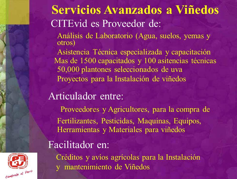 Productos Prioritarios de la Región Ica … Uvas pisqueras y uvas de mesa PISCO BEBIDA BANDERA DEL PERU Desarrollo de vinos, licores derivados de la uva