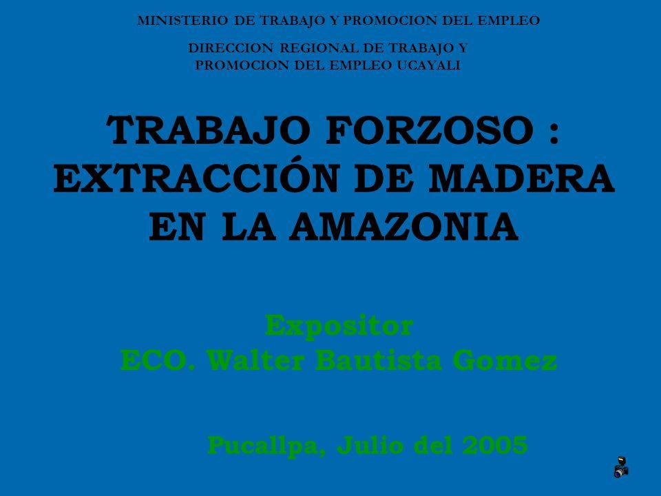 TRABAJO FORZOSO : EXTRACCIÓN DE MADERA EN LA AMAZONIA Expositor ECO.