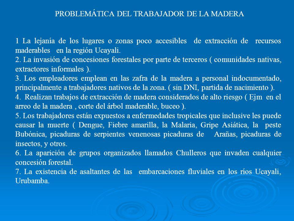 1 La lejanía de los lugares o zonas poco accesibles de extracción de recursos maderables en la región Ucayali.