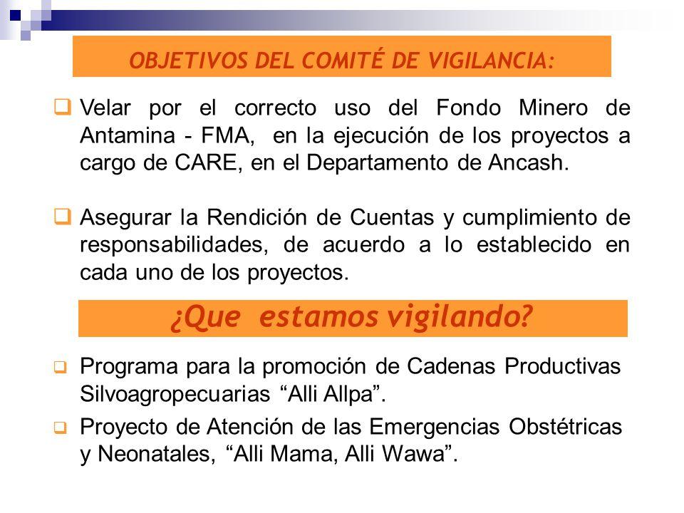 OBJETIVOS DEL COMITÉ DE VIGILANCIA: Velar por el correcto uso del Fondo Minero de Antamina - FMA, en la ejecución de los proyectos a cargo de CARE, en