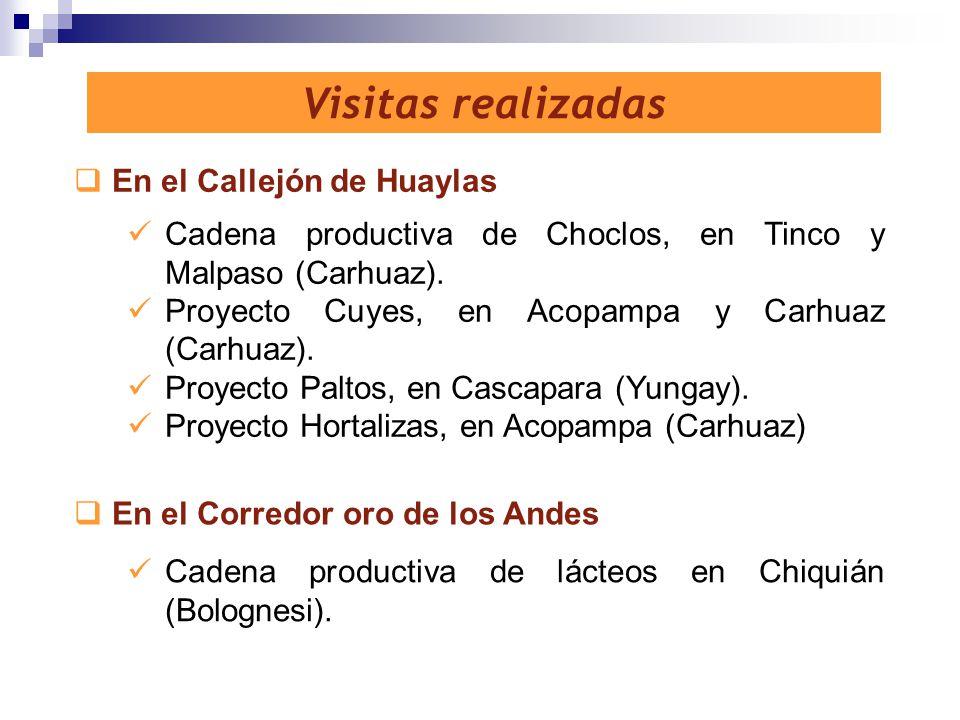Visitas realizadas En el Callejón de Huaylas En el Corredor oro de los Andes Cadena productiva de lácteos en Chiquián (Bolognesi). Cadena productiva d