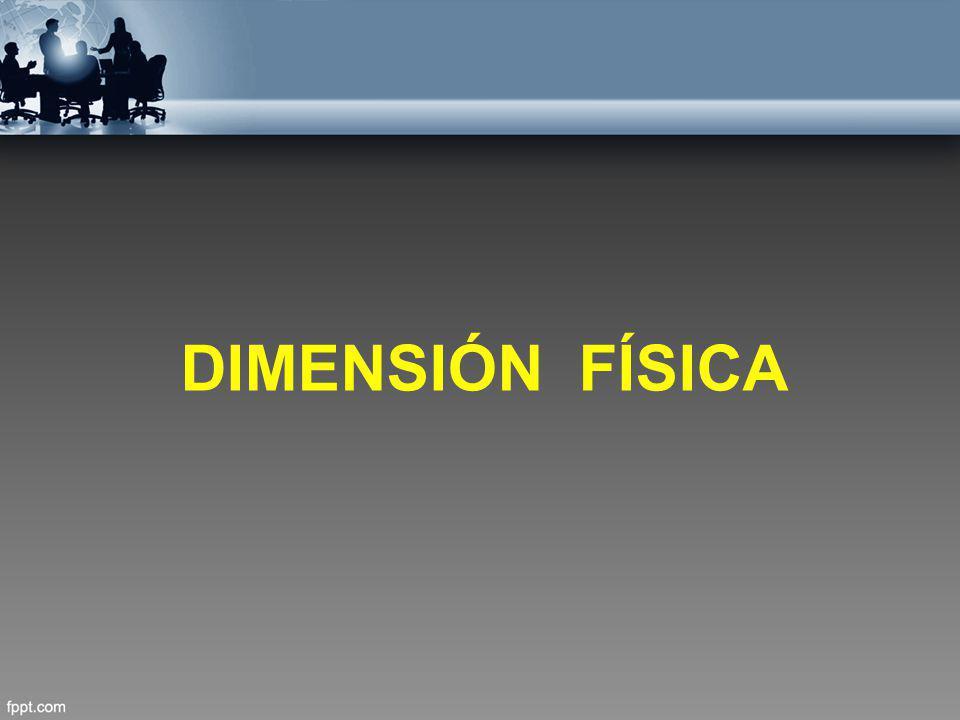 DIMENSIÓN FÍSICA