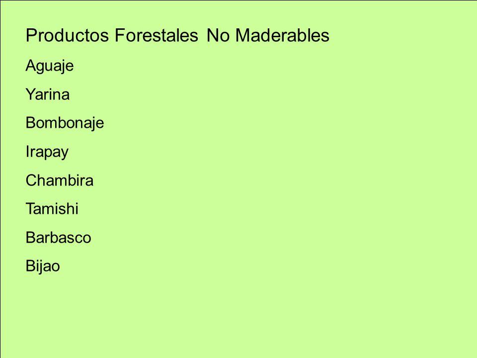 Productos Forestales No Maderables Aguaje Yarina Bombonaje Irapay Chambira Tamishi Barbasco Bijao