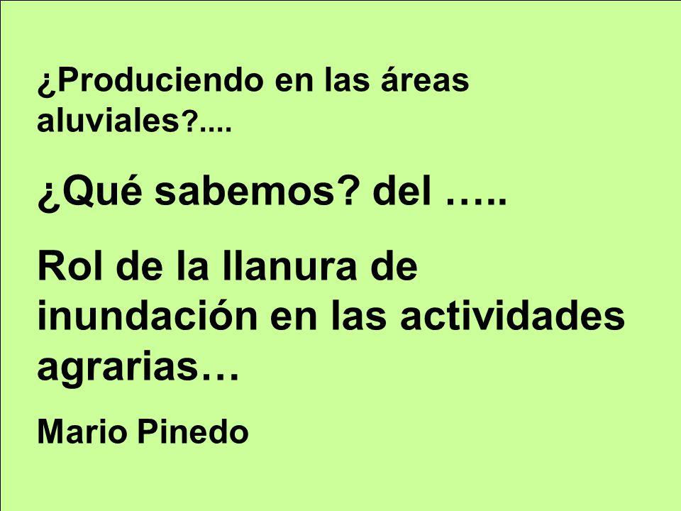 ¿Produciendo en las áreas aluviales ?.... ¿Qué sabemos? del ….. Rol de la llanura de inundación en las actividades agrarias… Mario Pinedo